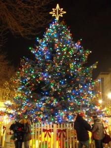 Christmas-Tree-of-Hope